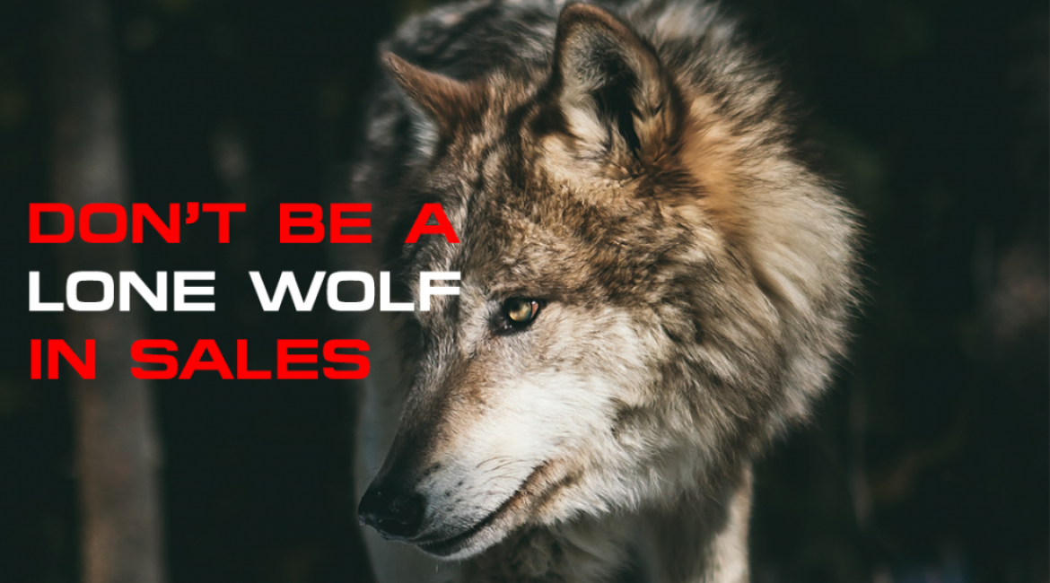 Don't Be A Lone Wolf in Sales!
